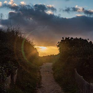 chemin illuminé par des rayons de soleil