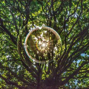 cercle de lumière